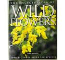 The encyclopedia of wild flowers
