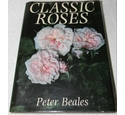 Classic roses - signed by author