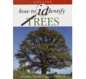 Collins how to identify trees