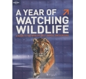 A year of watching wildlife