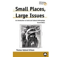 Small Places, Large Issues: An Introduction to Social and Cultural Anthropology