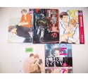 Five Gay Manga Novels (4)