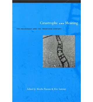 Catastrophe and Meaning