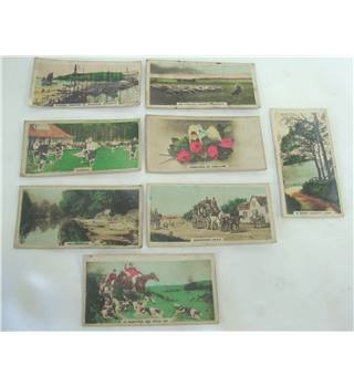 Antique Cigarette Collector Cards - Homeland Series