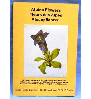 1920s. Alpine Flowers Pull-out Guide. 12 colour plates