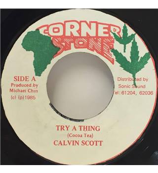 Try A Thing Calvin Scott
