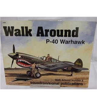 P-40 Warhawk Walk Around