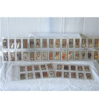 50% OFF SALE John Player and Sons Cigarette Cards Reprints 1970's Dogs