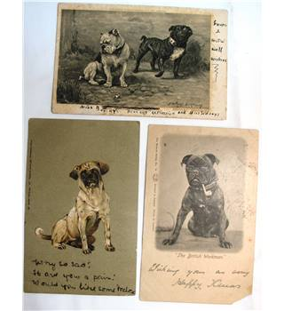 Three Early Postcards of Bulldogs