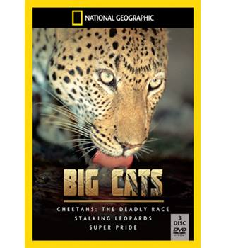 National Geographic Big Cats E