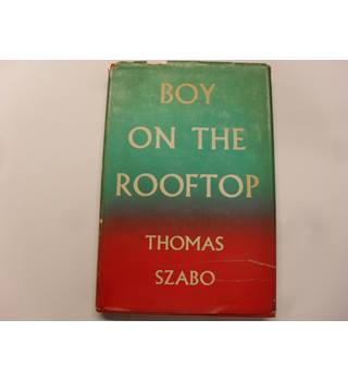 Boy On The Rooftop