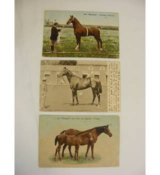 Three Old Postcards of Horses