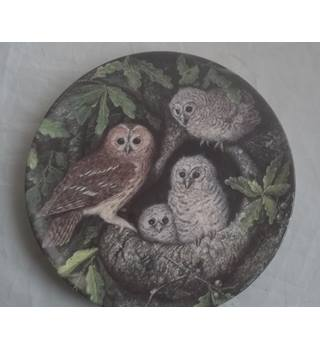 Vintage Wedgwood Bone China Safe In The Nest Dick Twinney Tawny Owl And Young Plate
