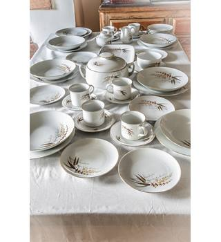 34 Piece Winterling Bavaria Dinner Service