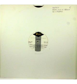 "Sorted ‎– Papa's Got A Brand New Pigbag - 12"" Single - PWLT 234"