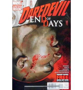 Daredevil : End Of Days #2 - January 2013