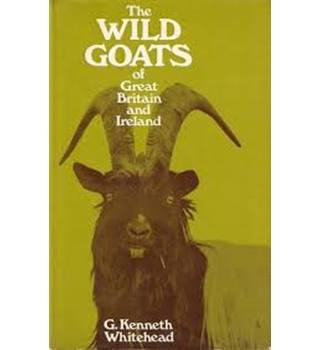 The wild goats of Great Britain and Ireland