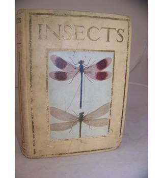 BRITISH INSECTS SHOWN TO THE CHILDREN