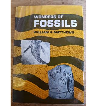 Wonders of Fossils