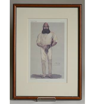 Quot Cricket Quot By Quot Spy Quot Framed Print By Vincent Brooks Day