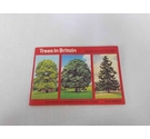 Brooke Bond Picture Cards Trees in Britain