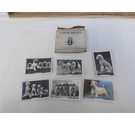 Senior Service Cigarette cards Dogs x6