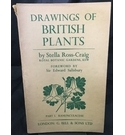 Drawings of British Plants - Part 1