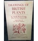 Drawings of British Plants - Part 2