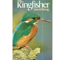The Kingfisher - signed