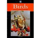 5 issues of Birds: the RSPB Magazine - late 1980s to mid 1990s