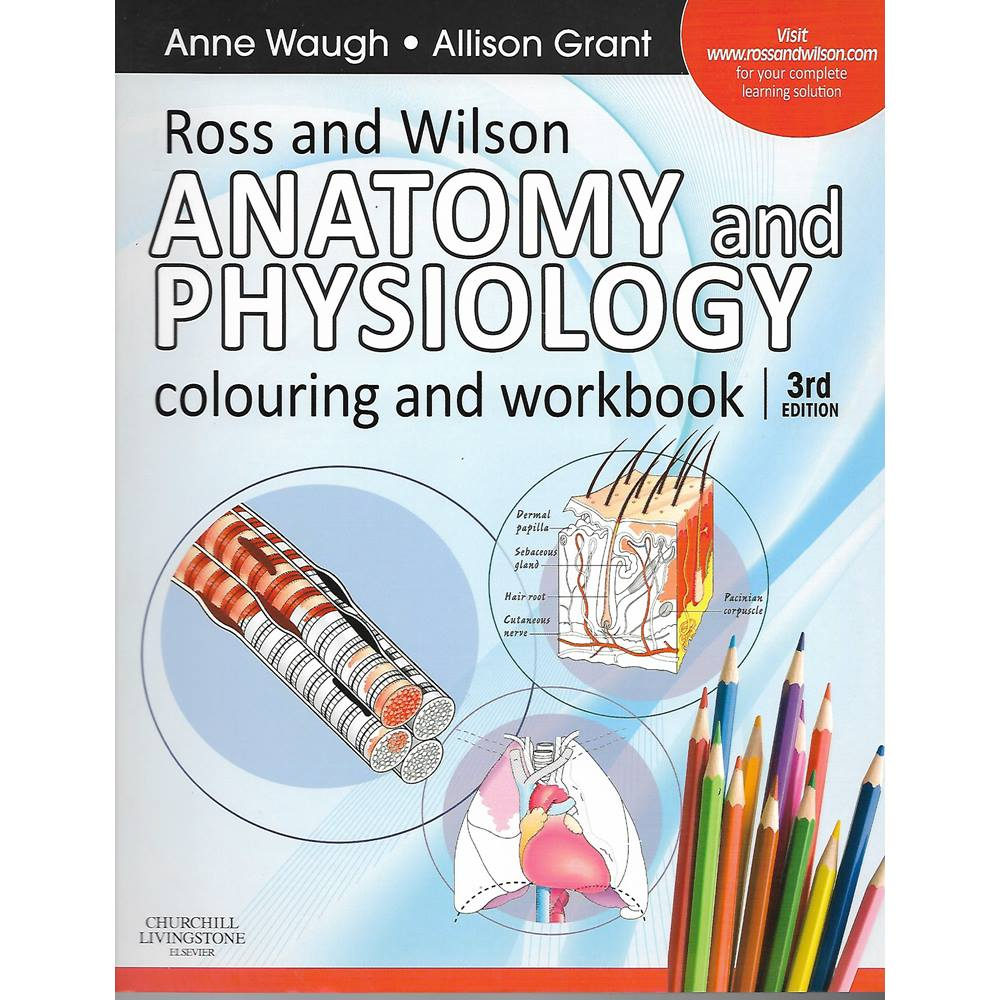 Ross And Wilson Anatomy Choice Image - human body anatomy