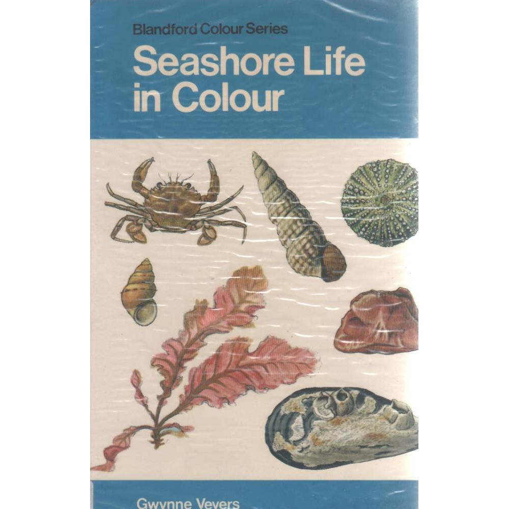 Preview of the first image of Seashore Life in Colour.