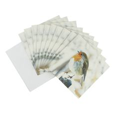 Robin Christmas card (10 pack)