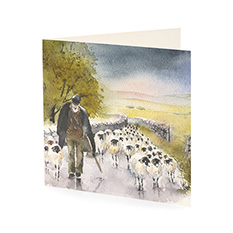 Shepherd Christmas card (10 pack)