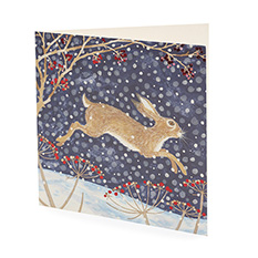 Large Snowy Hare Christmas Card (10 Pack)
