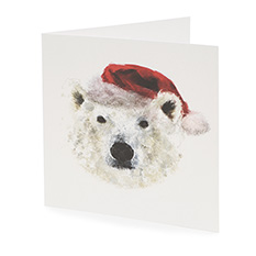 Large Polar Bear Christmas Card (10 Pack)
