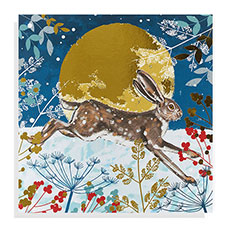 Leaping Hare Christmas card (10 pack)