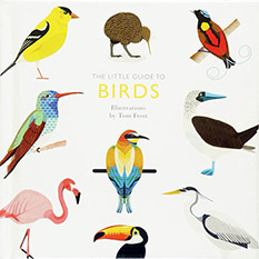A Little Guide To Birds Book