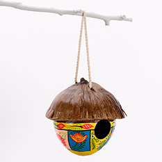 Painted Coconut Birdhouse