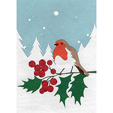 Robin - Fairtrade Christmas Card