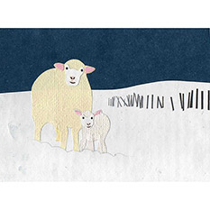 Sheep - Fairtrade Christmas Card
